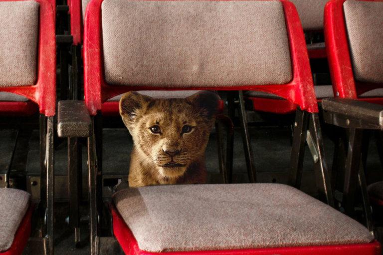 Elokuva-arvostelu: Leijonakuningas