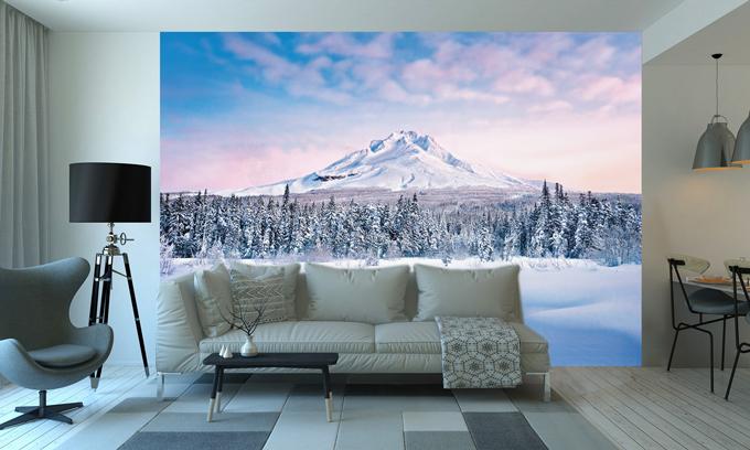 Kako da to učinim: dekoriranje u zimskom stilu