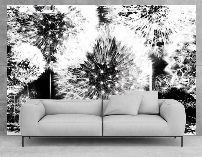 Inspiracija: Crno – bijela zidna umjetnost