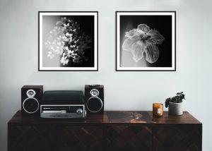 Inspiratie: 5 beste kunstfoto's voor uw leefruimte
