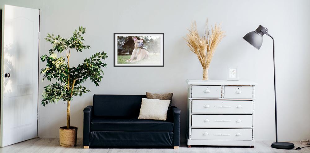Jak najlepiej wydrukować swoje zdjęcia?